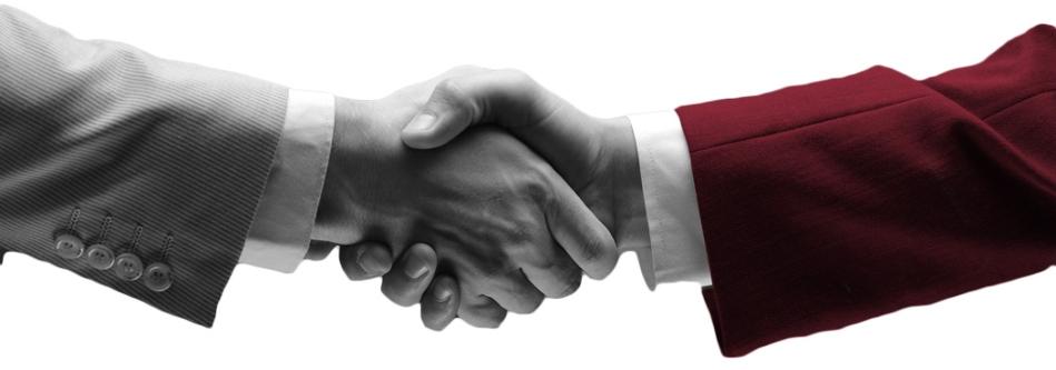 Elnefeidi Group Partnerships
